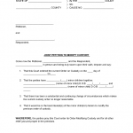 Child Custody Agreement Form