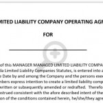 Limited Liability Company Operating Agreement Form