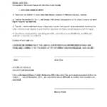 Affidavit Example