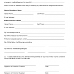 Emergency Medical Consent Form