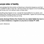 Liability Disclaimer Examples