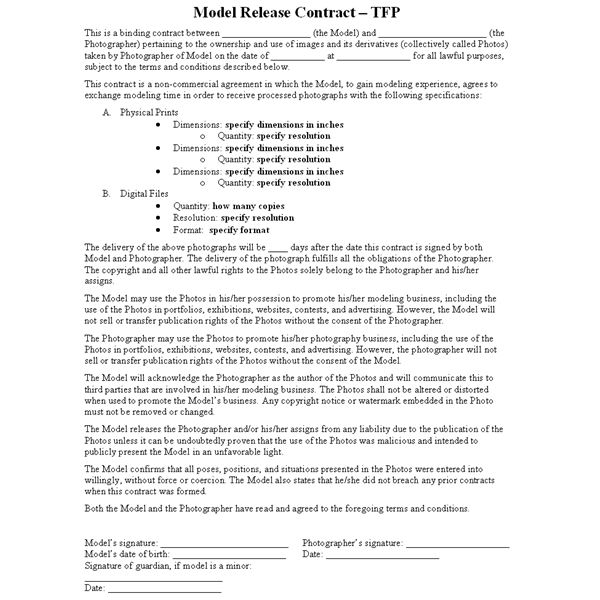 Model Contracts Free Printable Documents