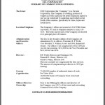 Offering Memorandum Sample