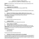 Sample Corporate Minutes Template