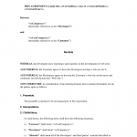 Web Developer Contract Template